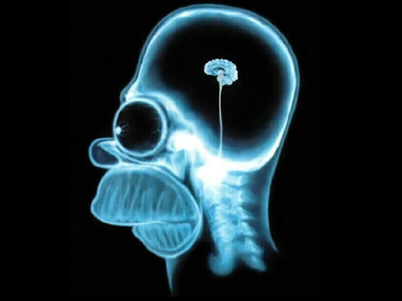 cerebro-do-homer-simpson