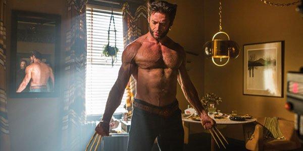 Wolverine-Apartment