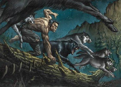 Resultado de imagem para hq wolverine origem