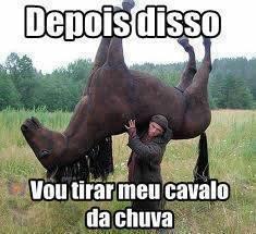 cavalo-na-chuva-plano-critico