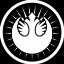 new-jedi-order-era-star-wars-plano-critico