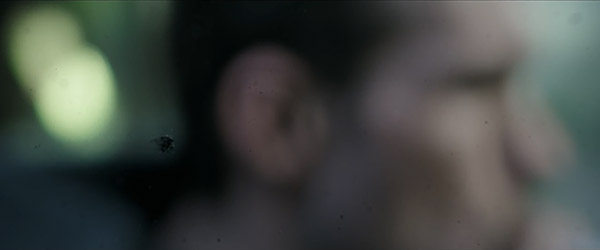 alienpng25