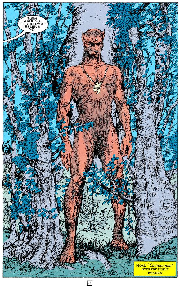 Animal Man (1988-1995) plano critico caminhante silencioso homem animal
