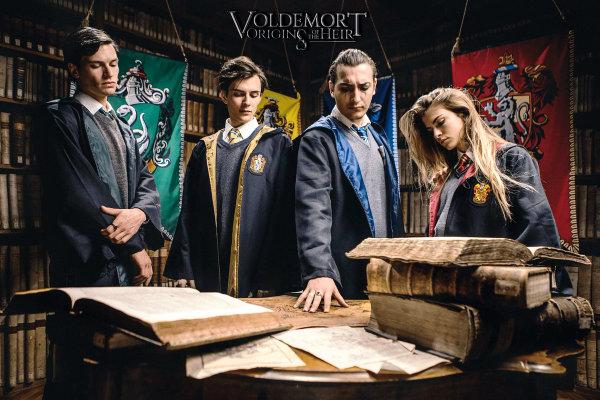 harry potter plano critico Voldemort Origins of the Heir