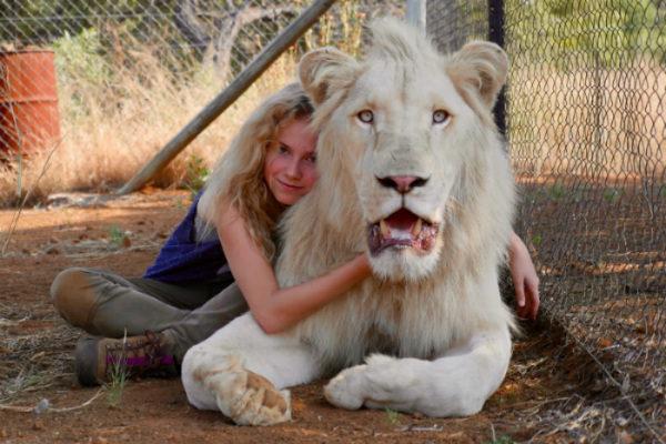 plano critico a menina e o leão 2018 filme