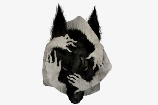 PLANO CRÍTICO O Lobo da Estepe Der Steppenwolf _Hermann Hesse