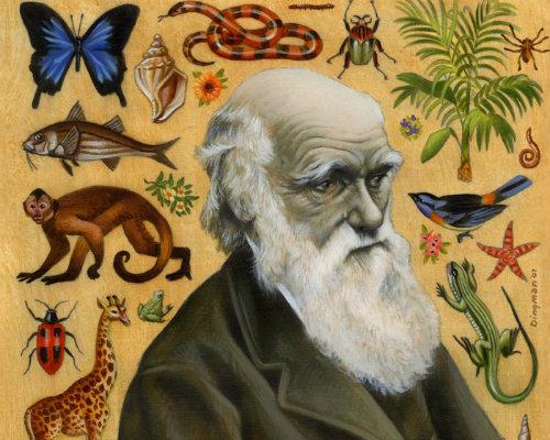 plano crítico A Origem das EspéciesOn the Origin of Species Charles Darwin